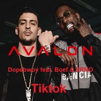 Cover Dopebwoy feat. Boef & SRNO - TikTok