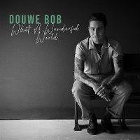 Cover Douwe Bob - What A Wonderful World