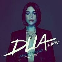 Cover Dua Lipa - Swan Song
