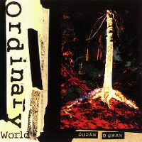 Cover Duran Duran - Ordinary World