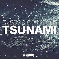 Cover DVBBS & Borgeous - Tsunami