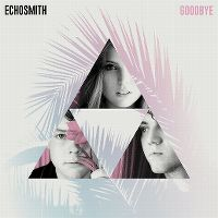 Cover Echosmith - Goodbye