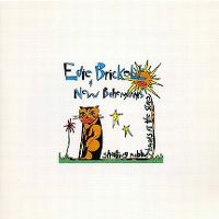 Cover Edie Brickell & New Bohemians - Shooting Rubberbands At The Stars