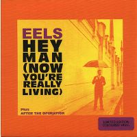 Cover Eels - Hey Man (Now You're Really Living)