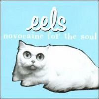 Cover Eels - Novocaine For The Soul