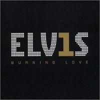 Cover Elvis Presley - Burning Love