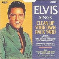 Cover Elvis Presley - Clean Up Your Own Back Yard