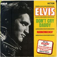 Cover Elvis Presley - Don't Cry Daddy