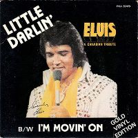 Cover Elvis Presley - Little Darlin'