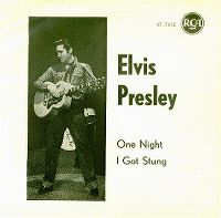Cover Elvis Presley - One Night