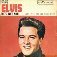 Cover Elvis Presley - She's Not You