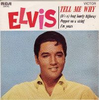 Cover Elvis Presley - Tell Me Why