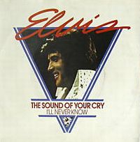Cover Elvis Presley - The Sound Of Your Cry