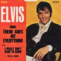 Cover Elvis Presley - There Goes My Everything