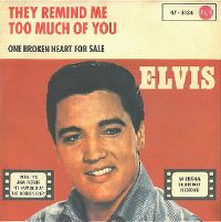 Cover Elvis Presley - They Remind Me Too Much Of You