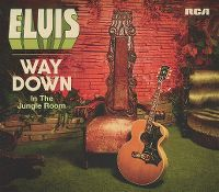 Cover Elvis Presley - Way Down In The Jungle Room