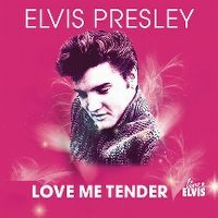 Cover Elvis Presley & Dani Klein - Love Me Tender 2010