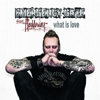 Cover Emergency Gate feat. Haddaway - What Is Love