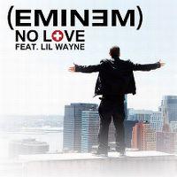 Cover Eminem feat. Lil Wayne - No Love