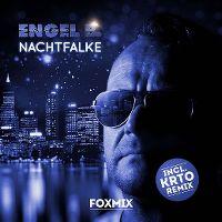 Cover Engel B. - Nachtfalke