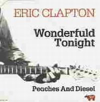 Cover Eric Clapton - Wonderful Tonight
