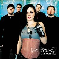 Cover Evanescence - Everybody's Fool