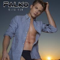 Cover Falko - With You