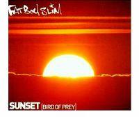 Cover Fatboy Slim - Sunset (Bird Of Prey)