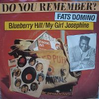 Cover Fats Domino - Blueberry Hill