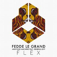 Cover Fedde Le Grand and Funk Machine feat. General Levy - Flex