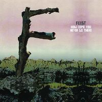 Cover Feist - How Come You Never Go There