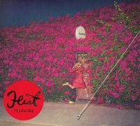 Cover Feist - Pleasure