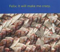 Cover Felix - It Will Make Me Crazy