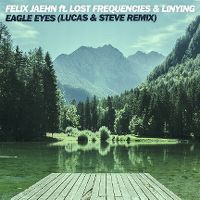 Cover Felix Jaehn feat. Lost Frequencies & Linying - Eagle Eyes