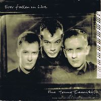 Cover Fine Young Cannibals - Ever Fallen In Love