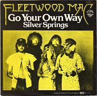 Cover Fleetwood Mac - Go Your Own Way