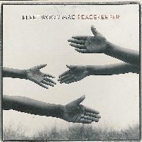 Cover Fleetwood Mac - Peacekeeper