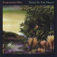 Cover Fleetwood Mac - Tango In The Night