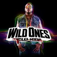 Cover Flo Rida - Wild Ones