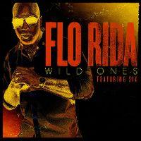Cover Flo Rida feat. Sia - Wild Ones