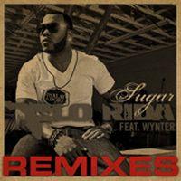 Cover Flo Rida feat. Wynter - Sugar