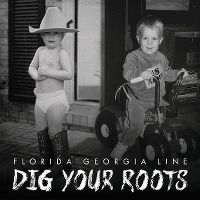 Cover Florida Georgia Line - Dig Your Roots