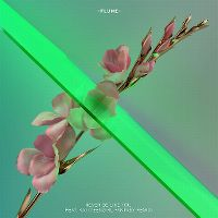 Cover Flume feat. Kai - Never Be Like You