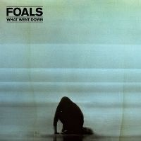 Cover Foals - What Went Down