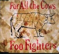 Cover Foo Fighters - For All The Cows
