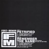 Cover Fort Minor feat. Styles Of Beyond - Remember The Name