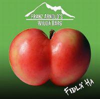 Cover Franz Arnold's Wiudä Bärg - Fidlä ha