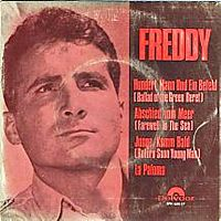 Cover Freddy - Hundert Mann und ein Befehl
