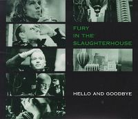 Cover Fury In The Slaughterhouse - Hello And Goodbye