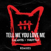 Cover Galantis & Throttle - Tell Me You Love Me